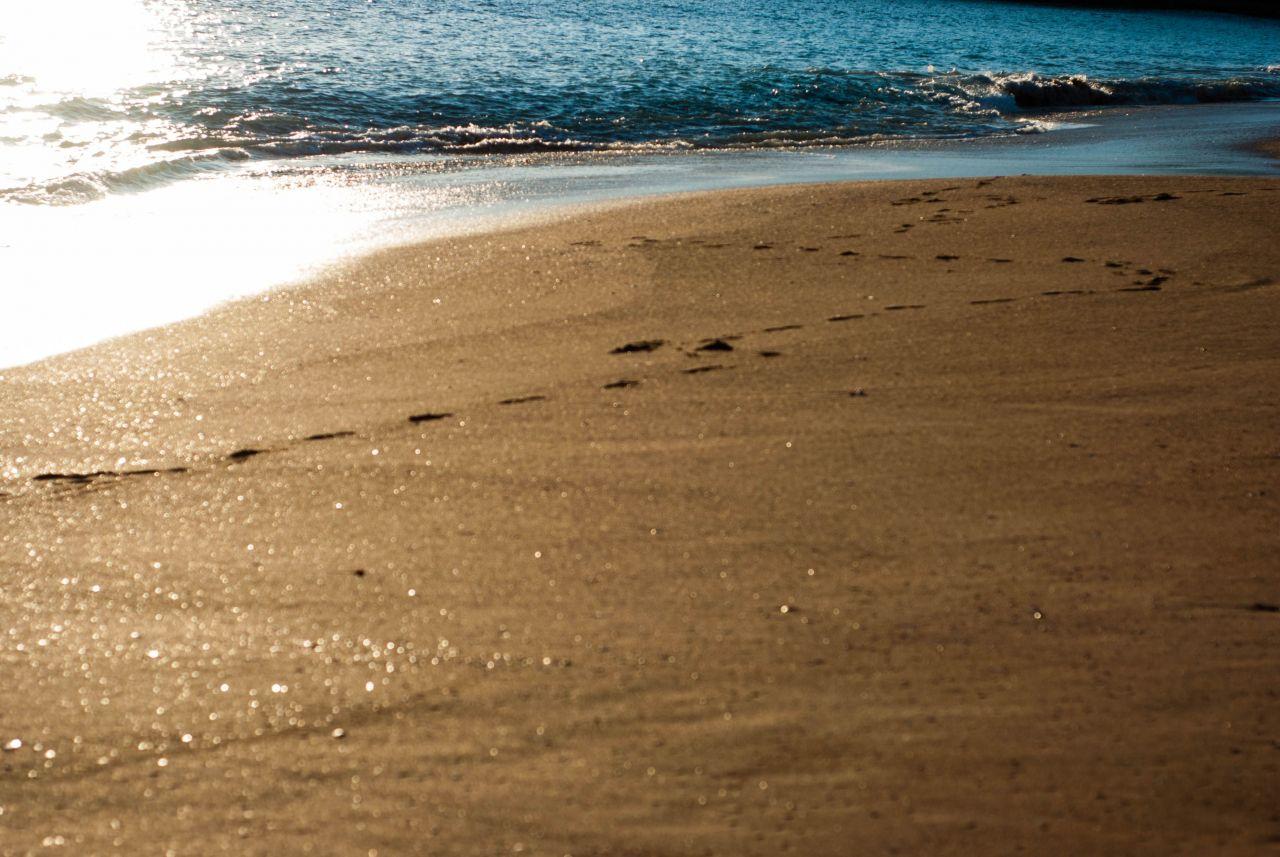 footprints-on-the-beach.jpg